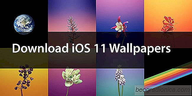 Download The Official iOS 11 Wallpapers para iPhone e iPad